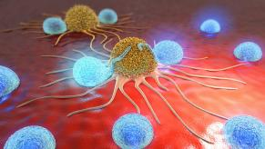 Unlocking cancer immunity with T-cells